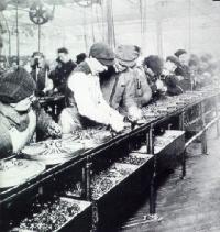 Fordin tuotantolinja, 1913