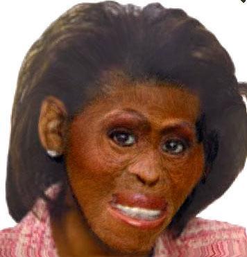 Michelle Obaman ja apinan naaman yhdistelmä