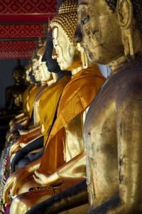 Kultaisia buddhapatsaita