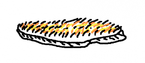 Secodescuda ryerberger